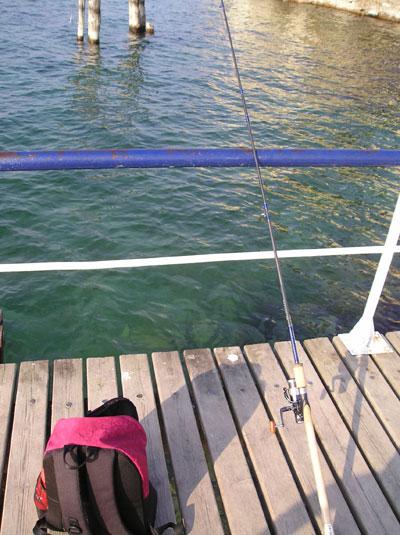 Pesca spinning per principianti.