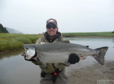 Salmone argentato, Kodiak Island, Alaska