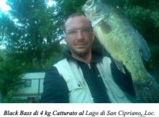 Black bass, 4 kg