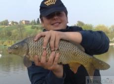 Carpa pescata a Cà dì Sola, Modena