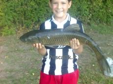 Amur pescato da Elias