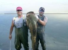 Siluro da 75kg