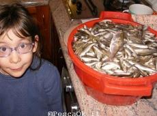 Nipotina e Cestino pesci