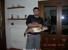 Luccio In Piemonte