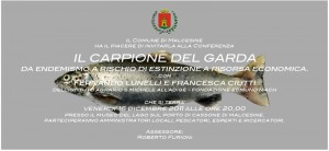 carpione estinzione