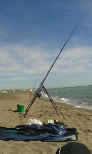 pesca-in-mare-licenza-gratuita