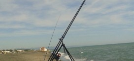Il permesso di pesca in Mare resta gratuito!