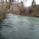 fiume-nera