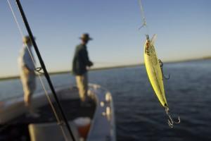 million-dollar-fish-7