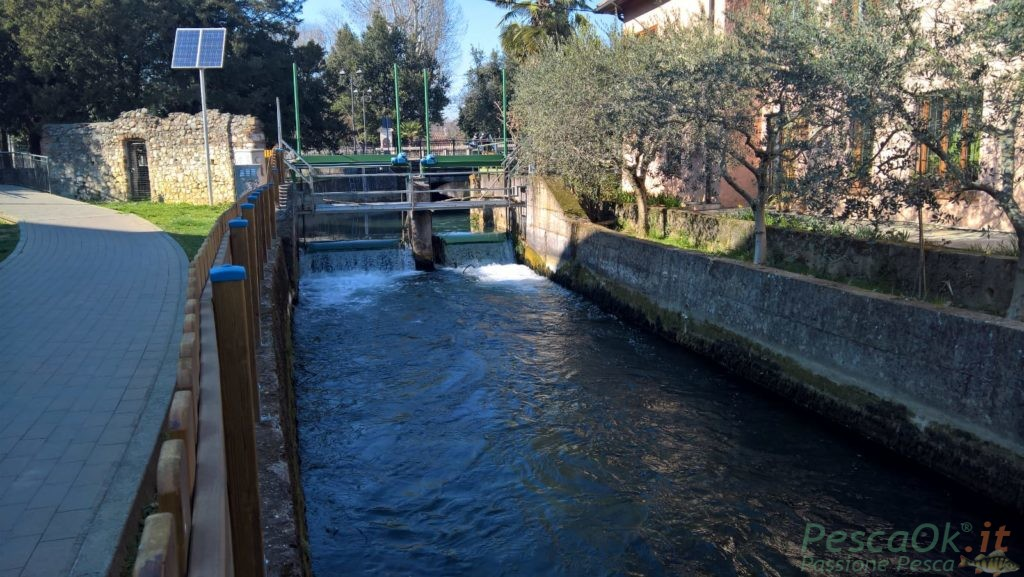 Urban Fishing a San Martino buon Albergo