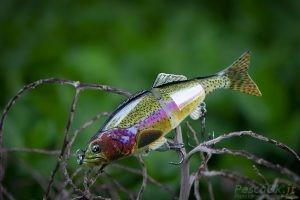 esca artificiale pesca