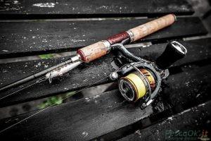 bass fishing gara