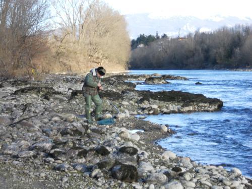 Pescatore in Adige